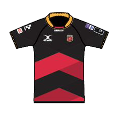 Dragons Home Kit