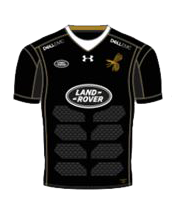 Wasps Home Kit