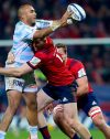 Heineken Champions Cup 'elite of the elite', say Munster and Racing