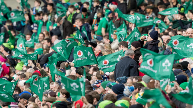 Ireland fans celebrate