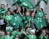 Ireland fans at the game Mandatory Credit ©INPHO/Dan Sheridan
