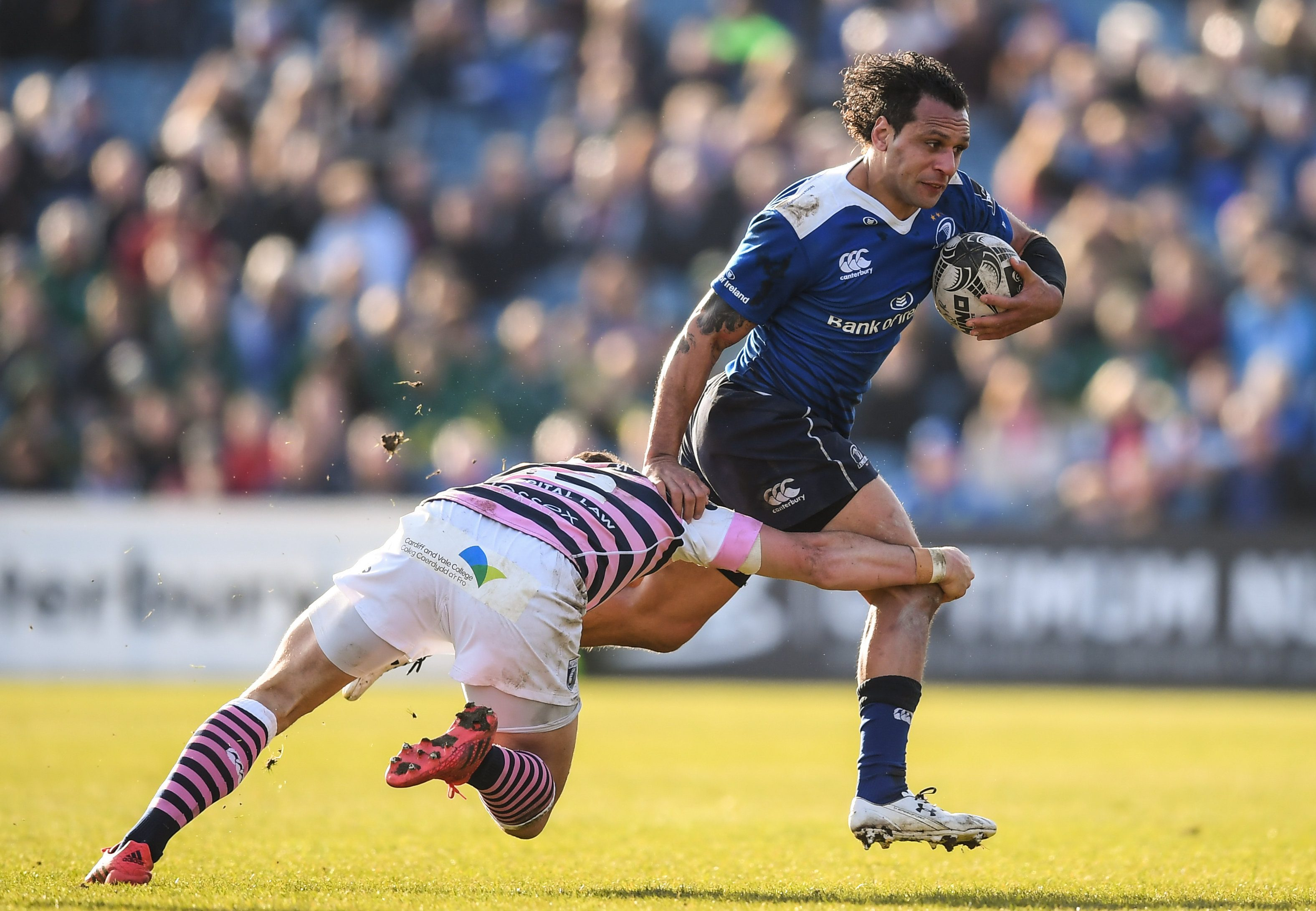 e36c02a02bb Leinster Rugby | Leinster v Cardiff Blues – Guinness PRO12 Round 18