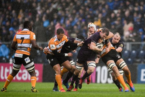 Match Report: Leinster Rugby 36 Toyota Cheetahs 12