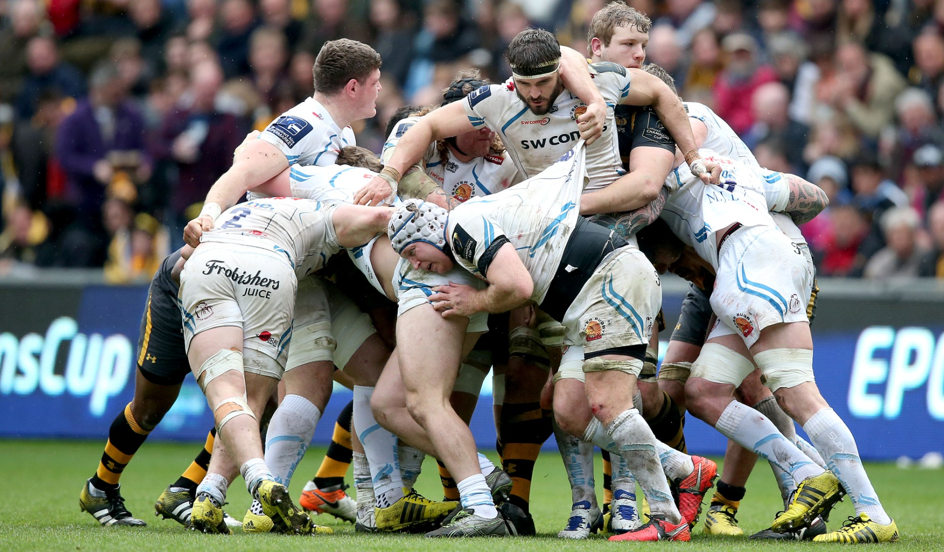 LionsWatch Club Profile: Exeter Chiefs