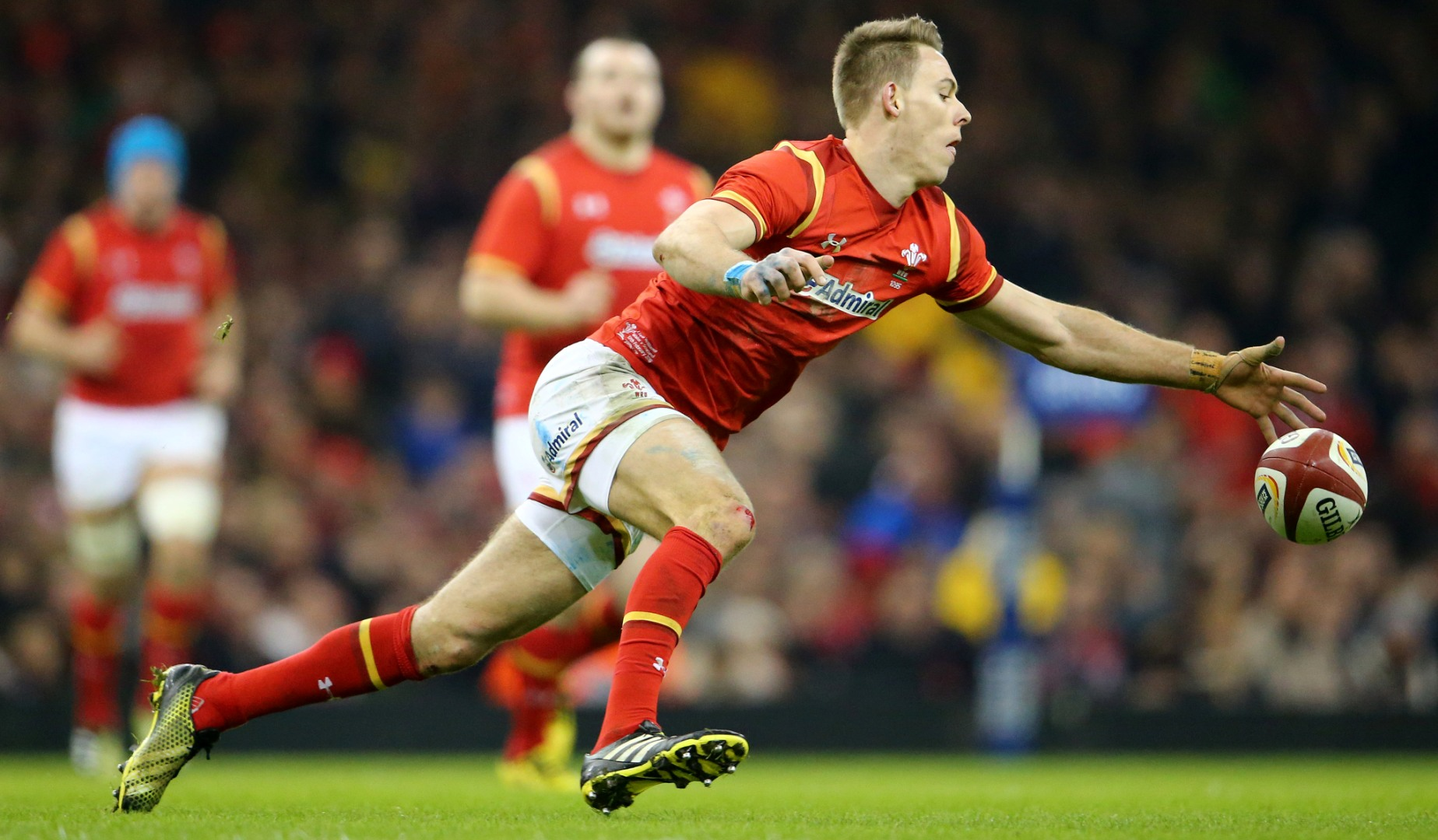LionsWatch: Williams shines as Wales beat Argentina
