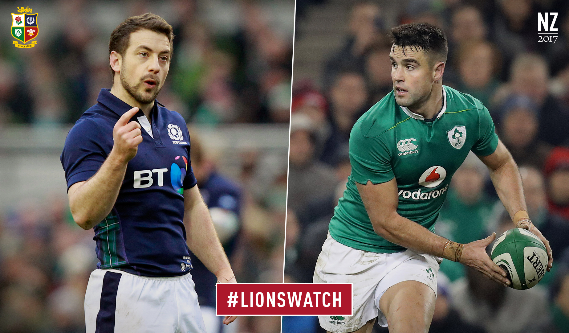 LionsWatch: Scotland v Ireland preview