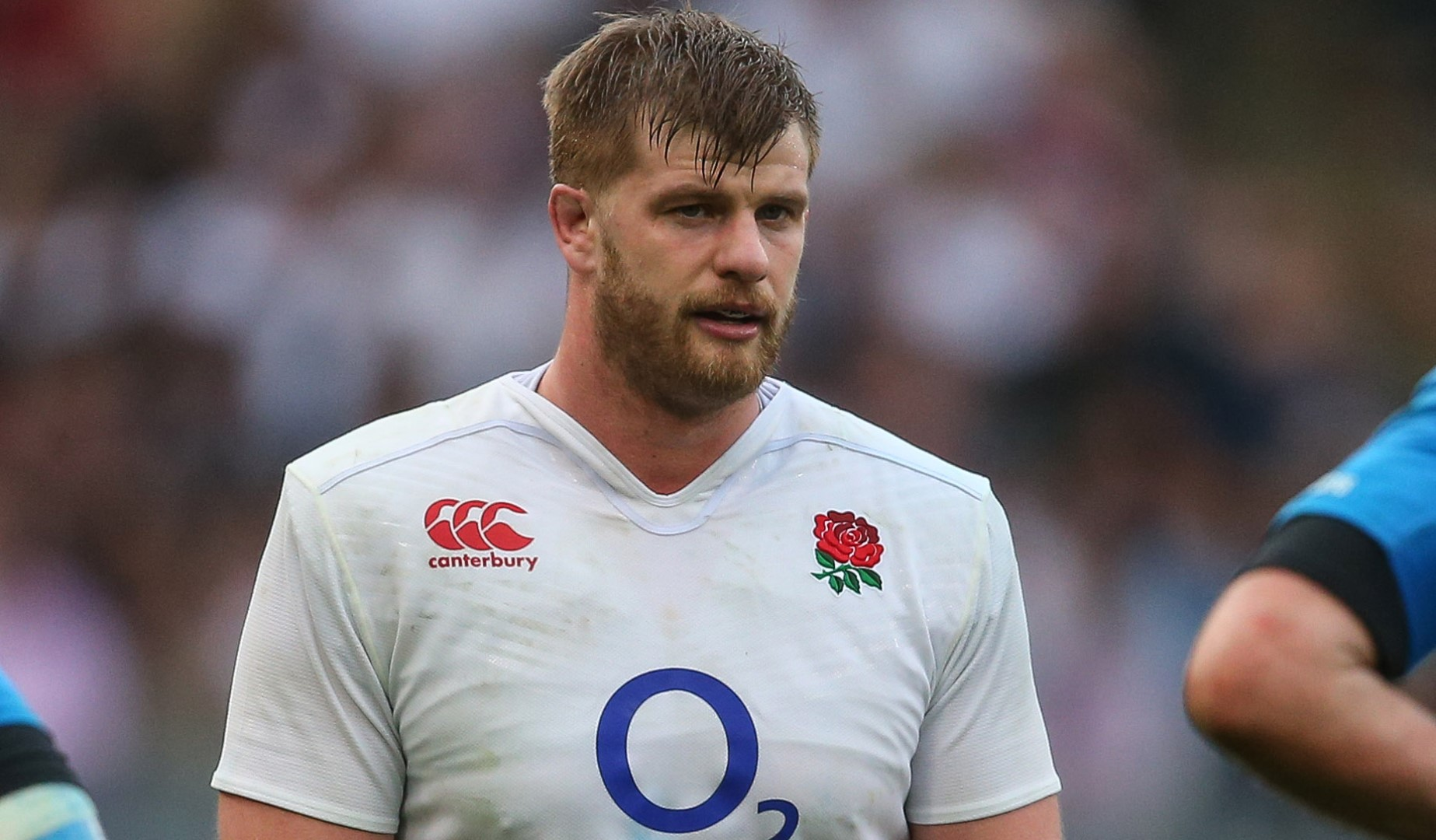 LionsWatch: Kruis returns as England prepare for Pumas