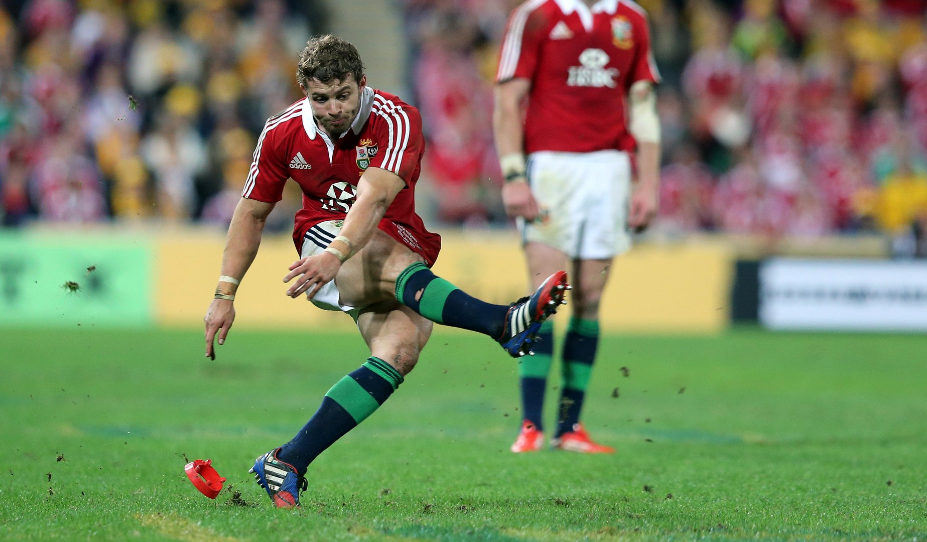 LionsWatch: Halfpenny returns for Wallaby clash