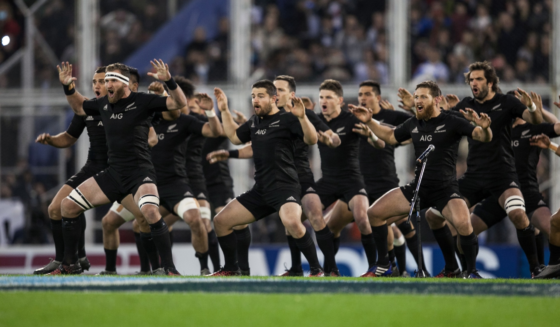 LionsWatch: Focus on the All Blacks