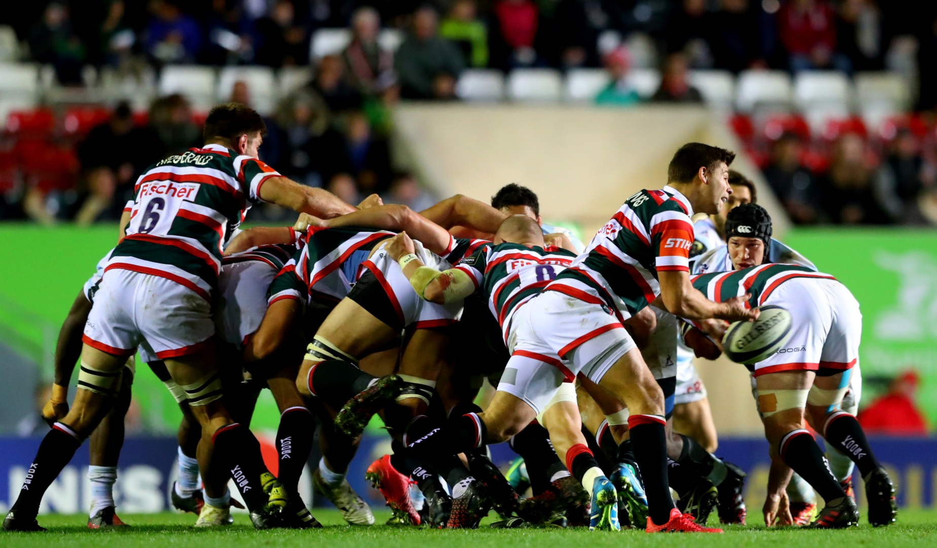 LionsWatch Club Profile: Leicester Tigers