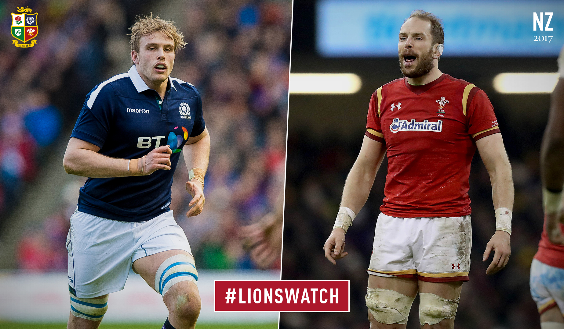 LionsWatch: Scotland v Wales preview
