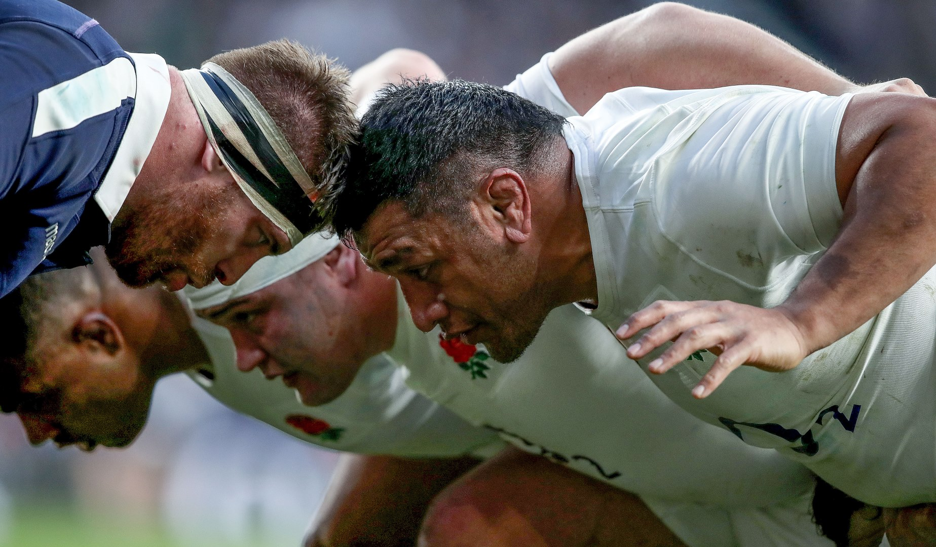 LionsWatch: Focus on loosehead props