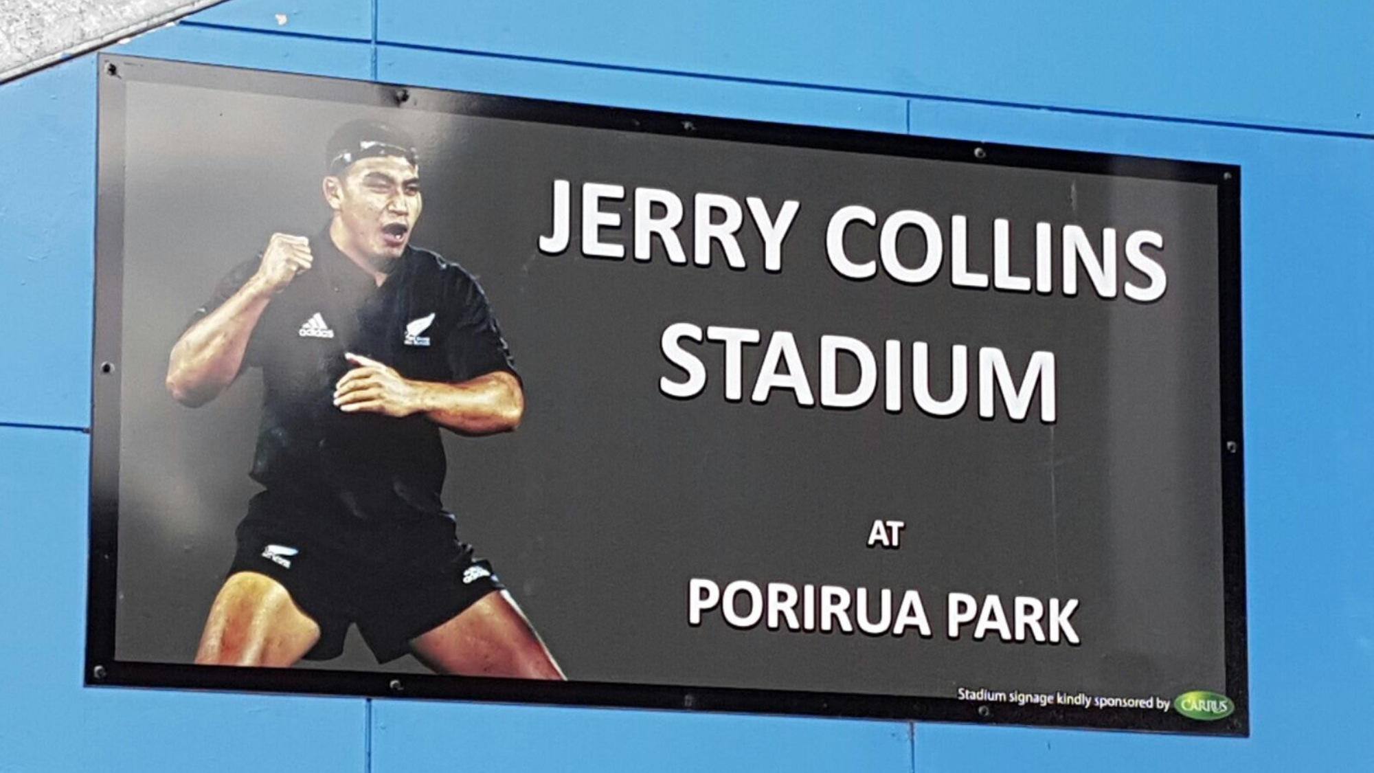 Lions welcomed at Jerry Collins Stadium on Monday