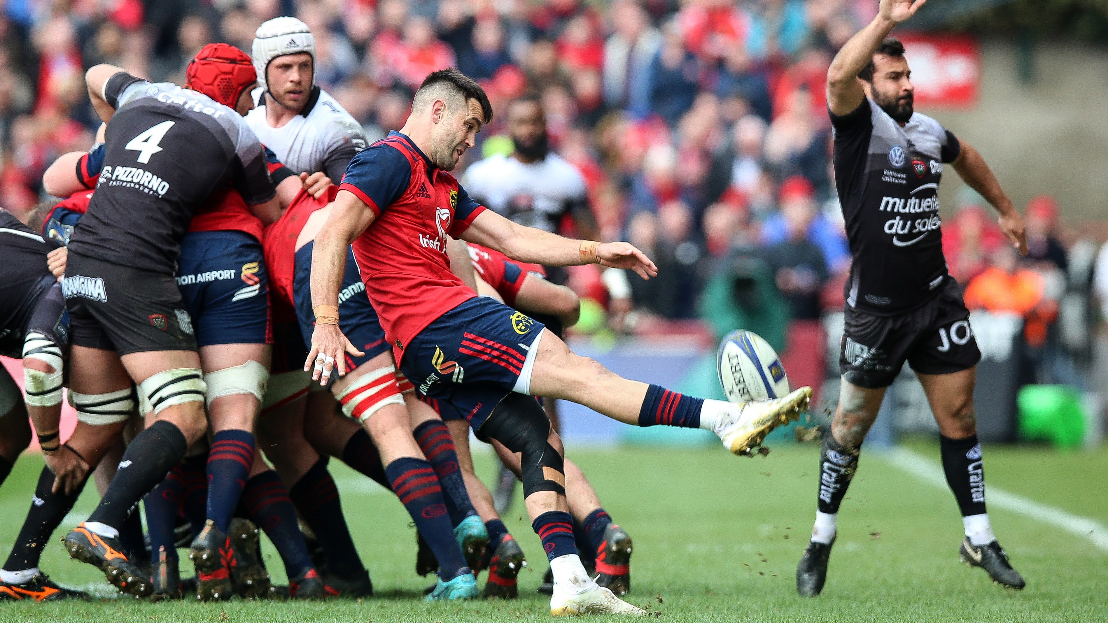 Scarlets, Munster and Leinster through to Champions Cup last four