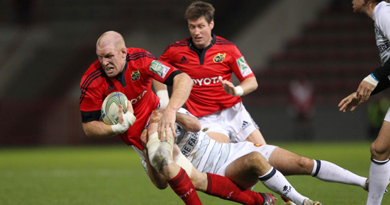 Scarlets Wont Be Distracted