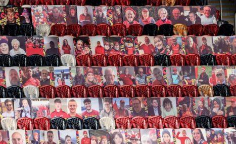 Thomond Park Fan Portraits