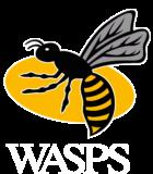 Wasps logo.