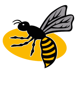 This is the logo for Wasps Netball