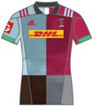 Harlequins Home