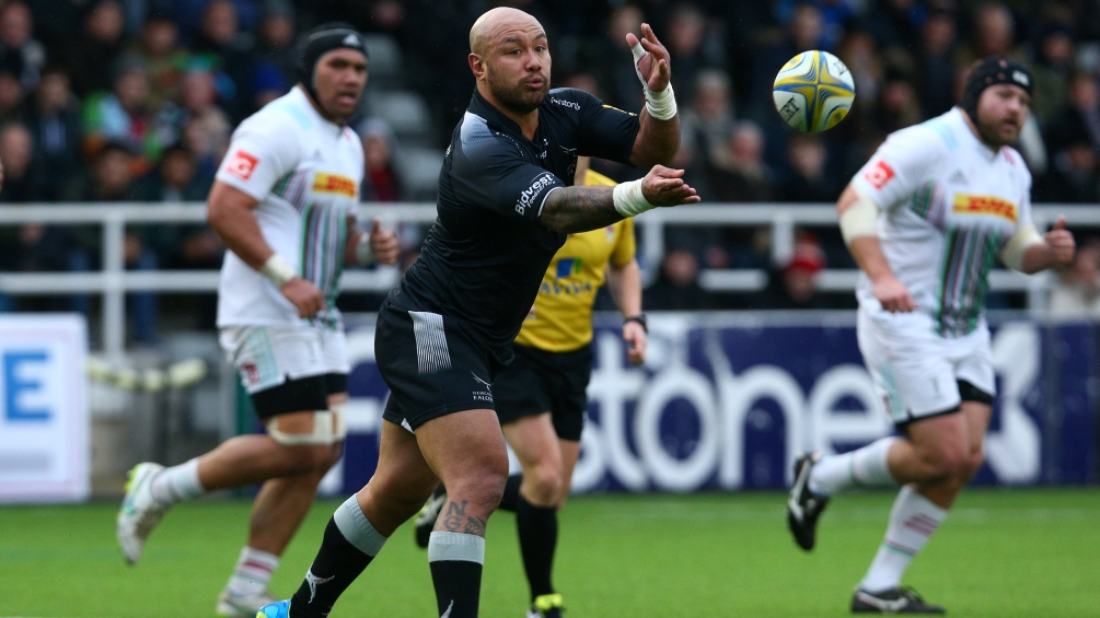 Nili Latu a calming influence at Newcastle Falcons