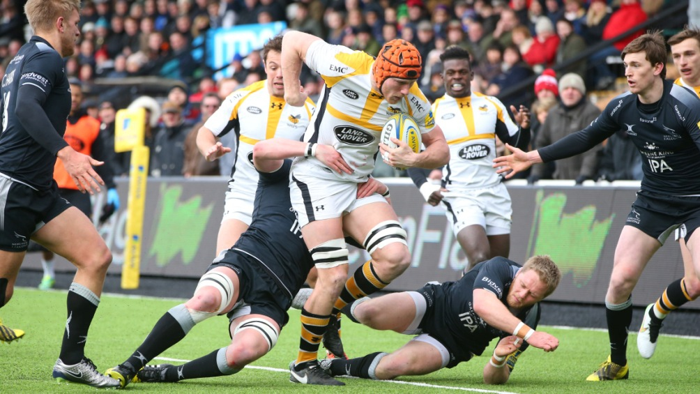 Myall believes Wasps could be on the brink of something special
