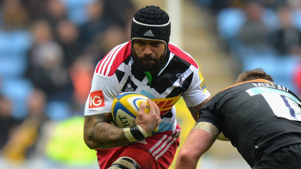 Harlequins sign back-row