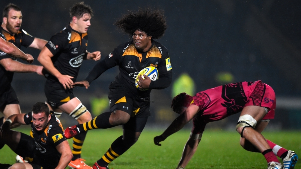 Johnson excited by Wasps' talented pack