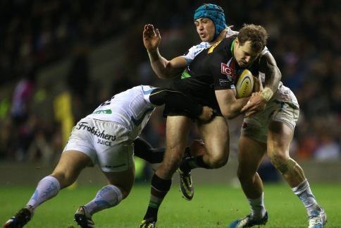 Evans looking to make every moment with Harlequins count