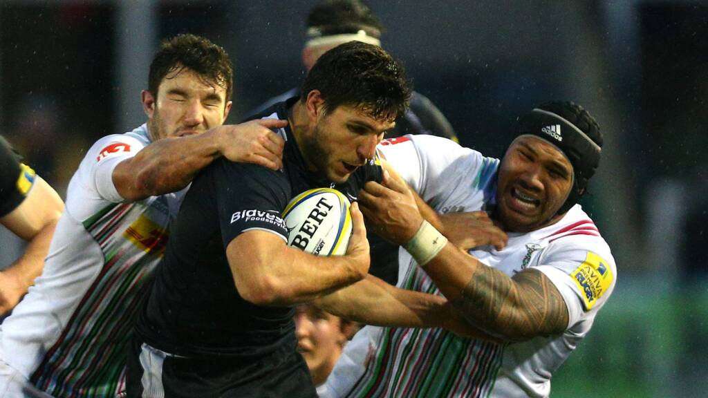 Preview: Harlequins v Newcastle Falcons