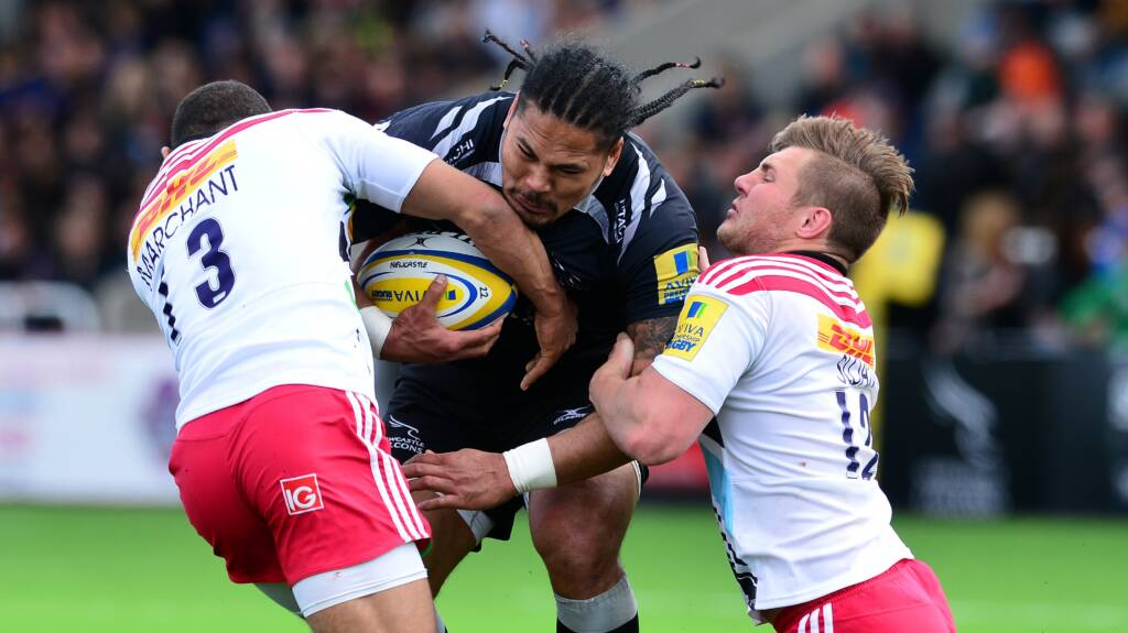 Preview: Newcastle Falcons v Harlequins