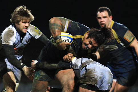Preview: Newcastle Falcons v Leeds Carnegie (rearranged)
