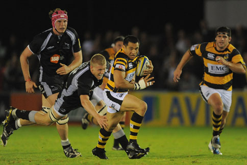 Preview: London Wasps v Newcastle Falcons