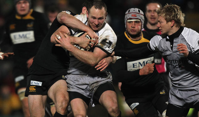 Preview: Newcastle Falcons v London Wasps