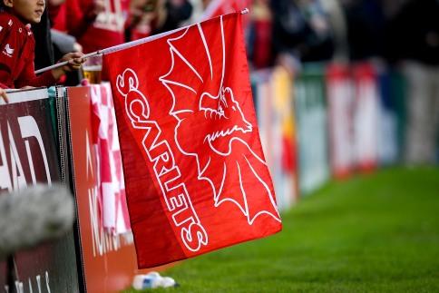 Scarlets 21 Newport Gwent Dragons 13