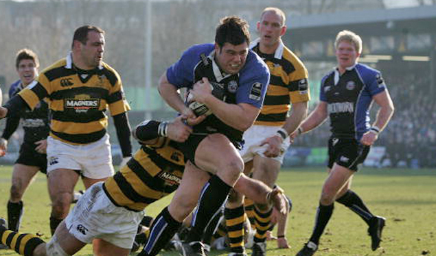 Bath stun Wasps