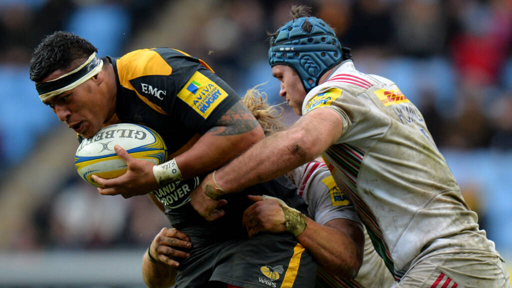 Preview: Wasps v Harlequins