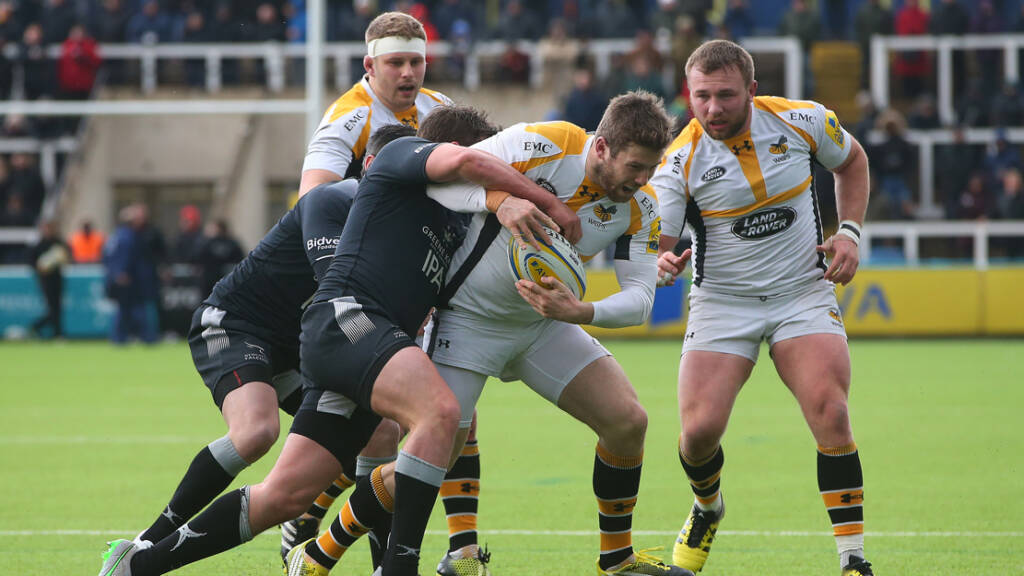 Preview: Wasps Rugby v Newcastle Falcons