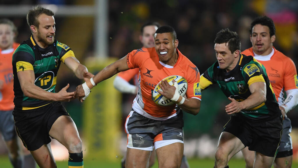 Newcastle Falcons v Northampton Saints