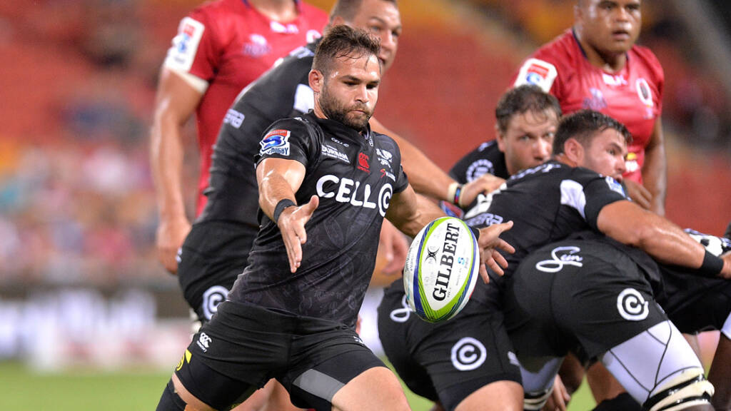 Saints sign Springbok scrum-half
