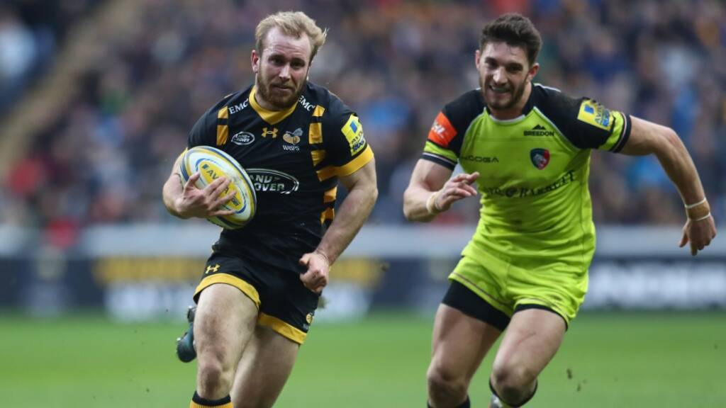 Wasps' Dan Robson set to earn 100th top-flight appearance against Worcester