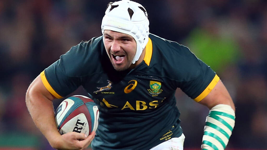 Northampton Saints adds Springbok back rower into squad