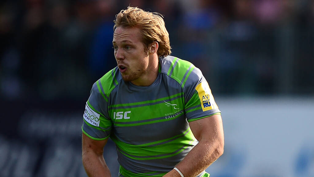 Round 5 Preview: Newcastle Falcons v London Irish