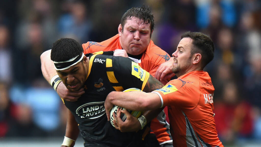 Round 8 Preview: Wasps v Newcastle Falcons