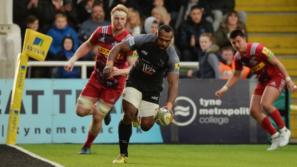 Match report: Newcastle Falcons 11 Harlequins 10