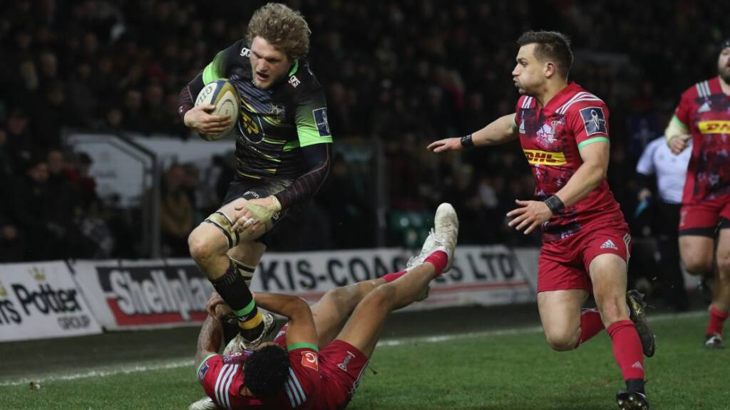 Match Reaction: Northampton Saints 36 Harlequins 10