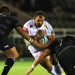 Round 14 Preview: Exeter Chiefs v Newcastle Falcons