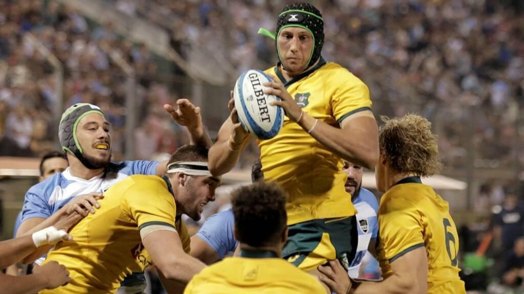 Australia international second row puts pen to paper with London Irish