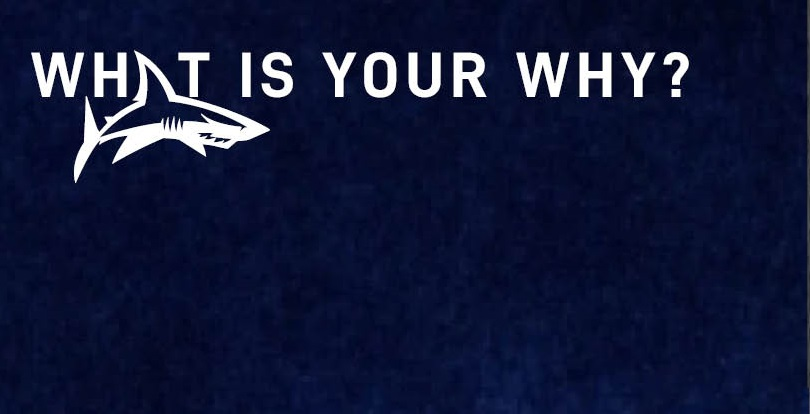 Trust launch 'What is your WHY?' campaign