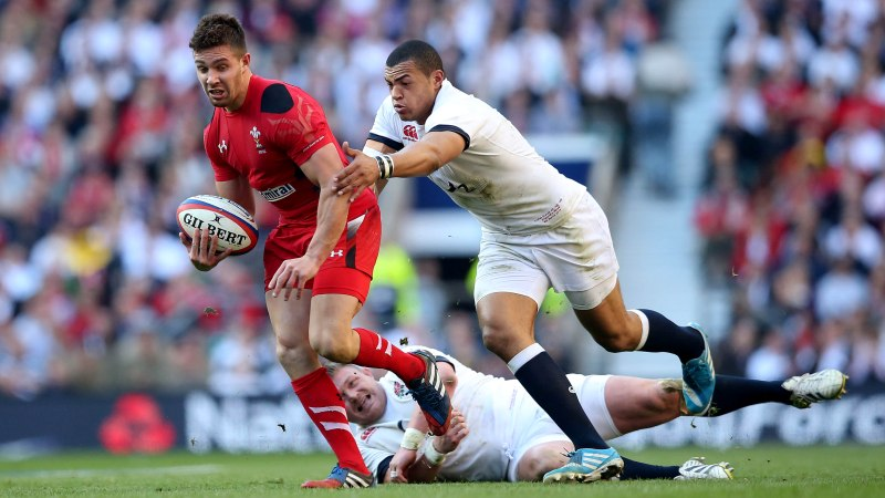 Webb can dominate Wales scrum-half jersey, says Rees