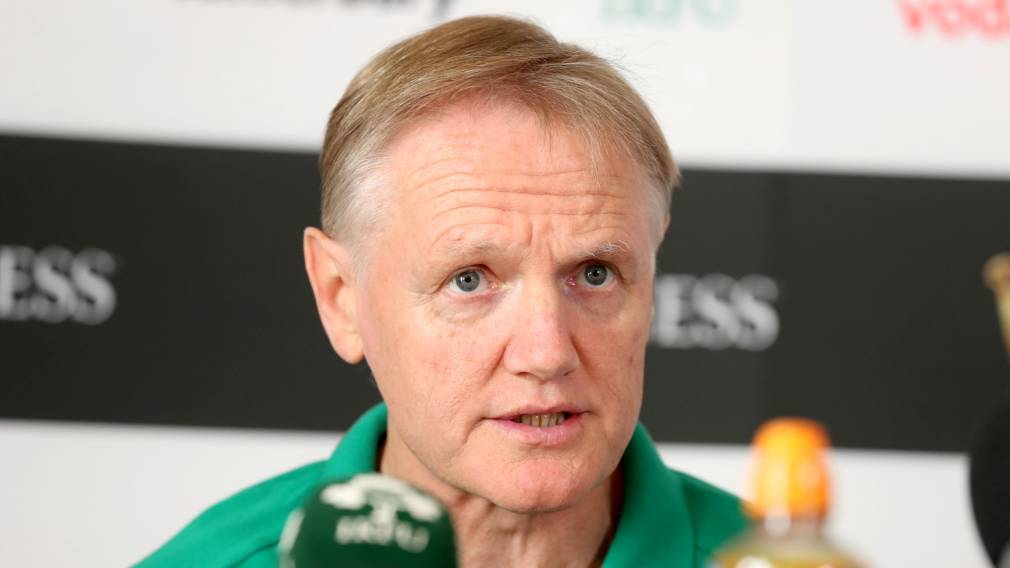 Schmidt makes the big calls in Ireland's World Cup squad